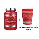 100% Whey Protein Professional od Scitec